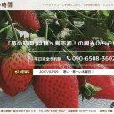 苺の時間 鶴ヶ島市のいちご狩り農園